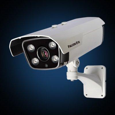 Falcon Eye Видеокамера Falcon Eye FE-IZ90/80M Discovery 2