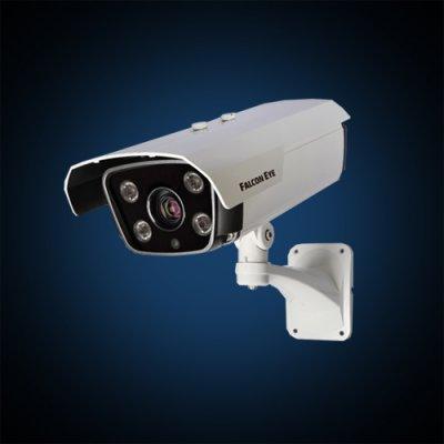 Falcon Eye Видеокамера Falcon Eye FE-IZ1080AHD/80M