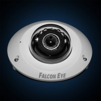 IP видеокамера Falcon Eye FE-IPC-D2n-10psma